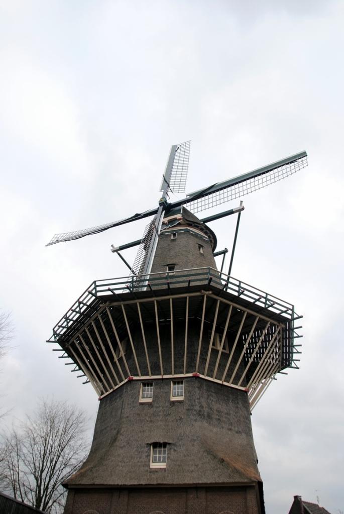 rutaamsterdam20